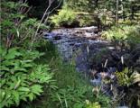 Lot 19 River Run At Spanish Peaks - Photo 11