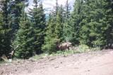 Timber Ridge Trail - Photo 2