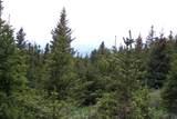 Timber Ridge Trail - Photo 5