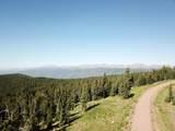 Timber Ridge Trail - Photo 6