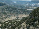 Lot 243 Turkey Ridge Ranch - Photo 8