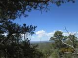 Prospect Canyon Ranch Lot C-6 - Photo 2