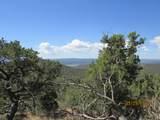 Prospect Canyon Ranch Lot C-6 - Photo 4