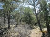 Prospect Canyon Ranch Lot C-6 - Photo 5