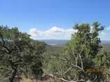 Prospect Canyon Ranch Lot C-6 - Photo 6
