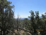 Prospect Canyon Ranch Lot C-6 - Photo 7