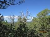 Prospect Canyon Ranch Lot C-6 - Photo 9
