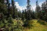 Lot 1 Cuchara Pass Ranch - Photo 2