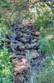 TBD Tres Valles West - Photo 2