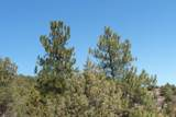 TBD Spanish Peaks Drive - Photo 8