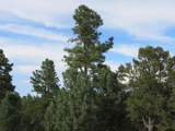 33151 Elk Park Rd - Photo 27