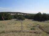 59 Filing 4 Silver Spurs Ranch - Photo 1
