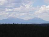 33247 Fisher Peak Pkwy - Photo 48