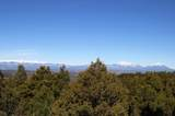 309 Mountain View - Photo 11