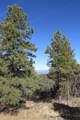 309 Mountain View - Photo 13