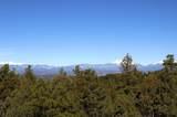 309 Mountain View - Photo 3