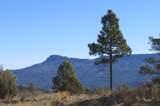 309 Mountain View - Photo 6