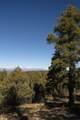 309 Mountain View - Photo 7