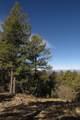 309 Mountain View - Photo 9