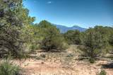 63 Colorado Land & Grazing - Photo 21