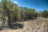 63 Colorado Land & Grazing - Photo 23