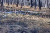 4994 County Rd. 442 - Photo 35