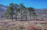 4994 County Rd. 442 - Photo 40