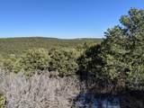TBD Silver Spurs Ranch - Photo 12