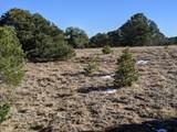 TBD Silver Spurs Ranch - Photo 2