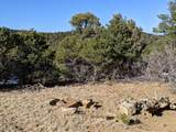 TBD Silver Spurs Ranch - Photo 3
