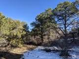 TBD Silver Spurs Ranch - Photo 4