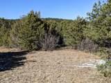 TBD Silver Spurs Ranch - Photo 5