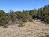 TBD Silver Spurs Ranch - Photo 6