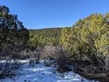TBD Silver Spurs Ranch - Photo 7