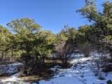 TBD Silver Spurs Ranch - Photo 8