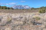 821 Comanche Drive - Photo 55