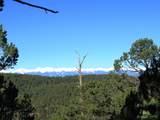 3322 Trail Ridge - Photo 1