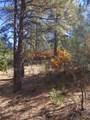 3322 Trail Ridge - Photo 10
