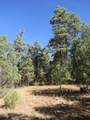 3322 Trail Ridge - Photo 11
