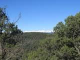 3322 Trail Ridge - Photo 12
