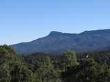 3322 Trail Ridge - Photo 14