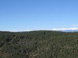 3322 Trail Ridge - Photo 15