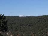 3322 Trail Ridge - Photo 16