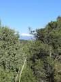 3322 Trail Ridge - Photo 2