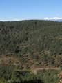 3322 Trail Ridge - Photo 3