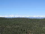 3322 Trail Ridge - Photo 4