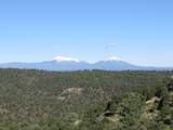 3322 Trail Ridge - Photo 6
