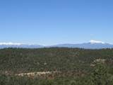 3322 Trail Ridge - Photo 7