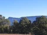3322 Trail Ridge - Photo 8