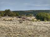 Lot 80 Turkey Ridge Ranch - Photo 1